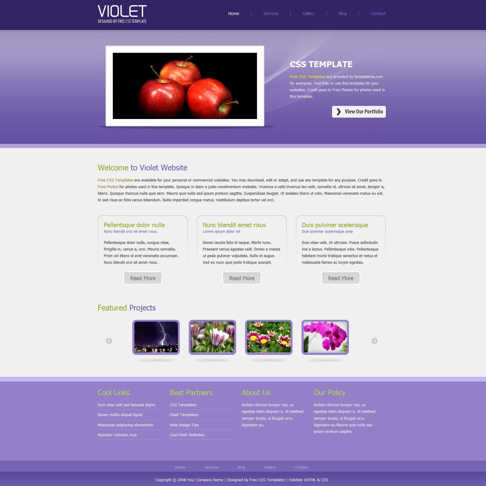 silver website templates