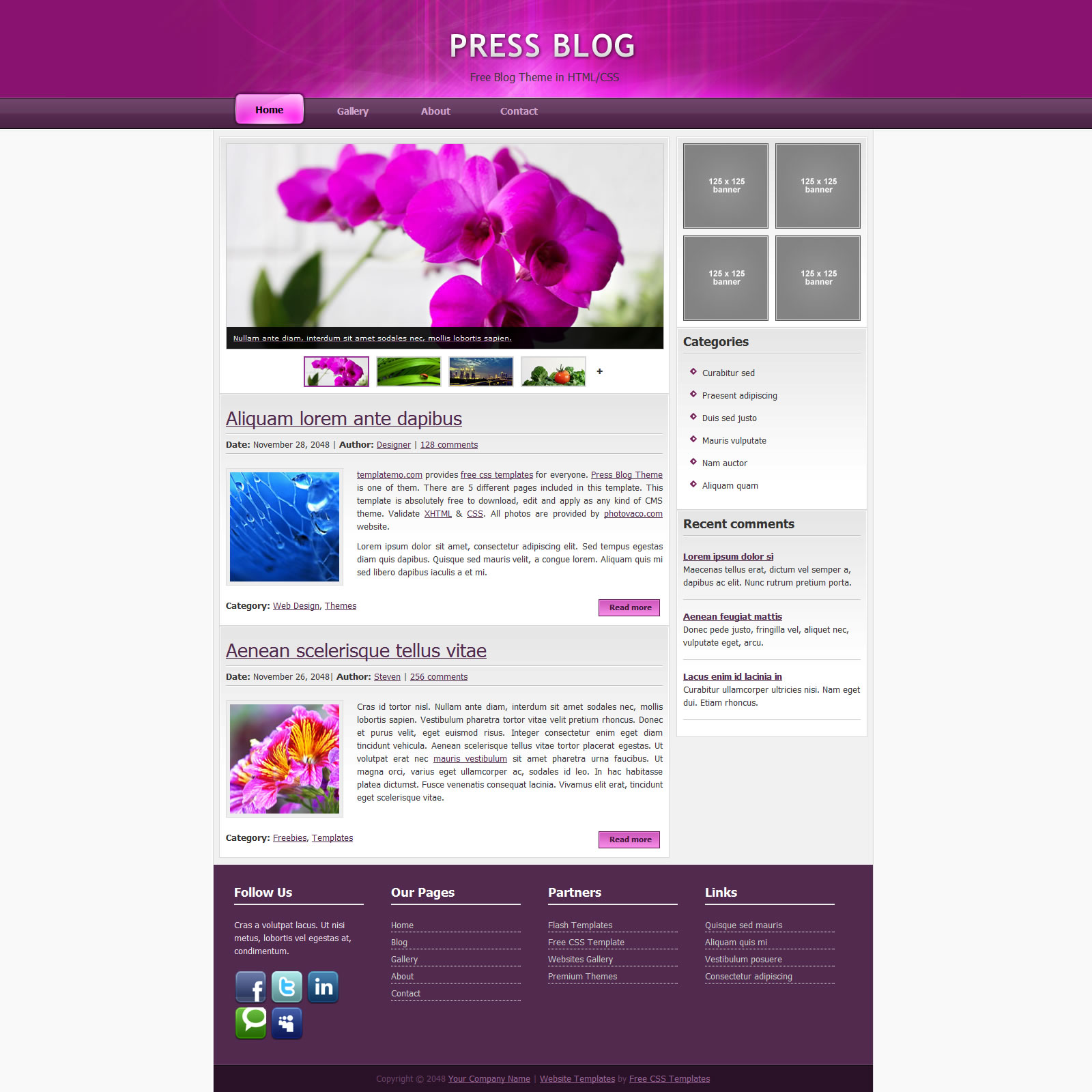 blog website templates