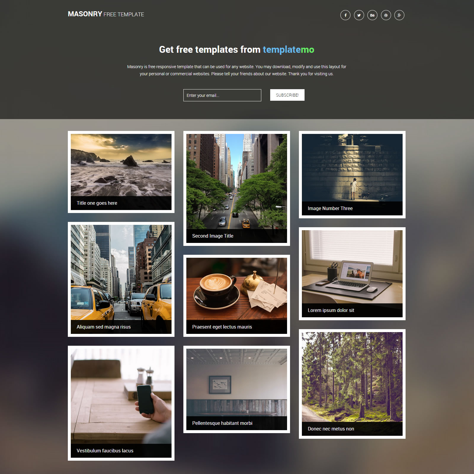 Gallery Website Templates by templatemo